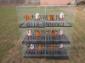 鸽子笼 鸽笼子 肉鸽笼 鸽笼厂 好鸽笼 鸽笼具 鸽设备 鸽笼